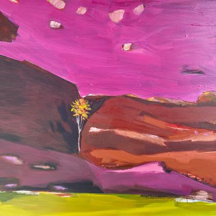 Split Rock Tree.40 x 50cm. Meagan Jacobs