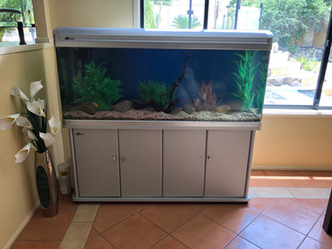 All-in-one Aquarium