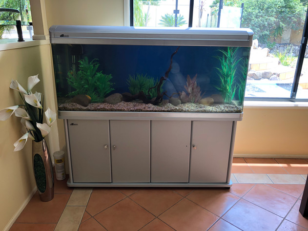All-in-one Aquarium
