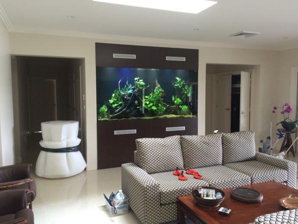 8'x 2' x 4' In Wall Aquarium