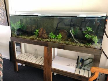 6' Aquarium at University