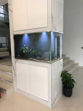 Custom centre room Aquarium