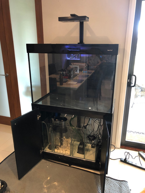 AquaReef 300 equipment set up