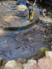 Mud and leaf debri on base of pond