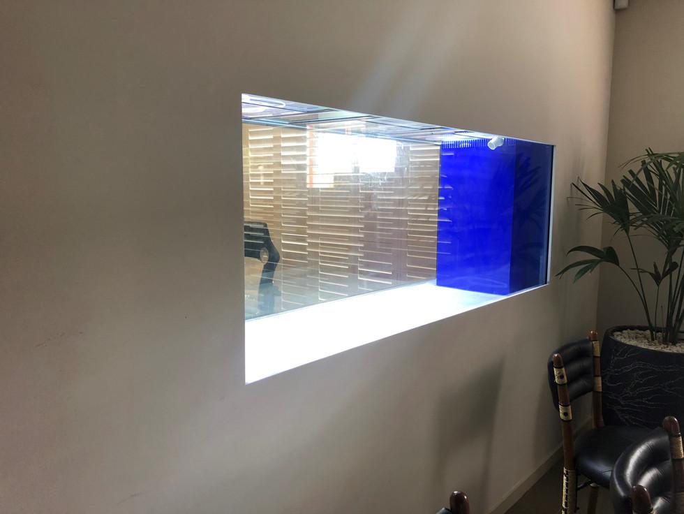 Custom In wall Aquarium ready for set up