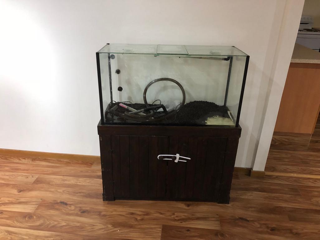 Emptying Aquarium