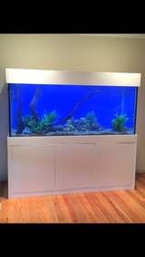 """6' x 2' x 30"""" Custom Aquarium Unit"""