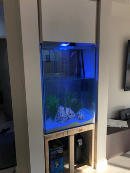 Custom in wall aquarium being installed