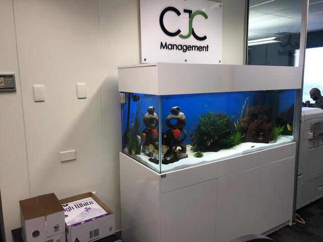 Filled relocated Aquarium