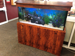 Retirement Village Aquarium
