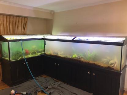Filling New Aquariums
