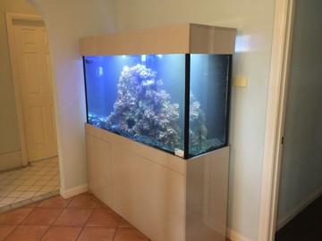 Custom Marine Aquarium