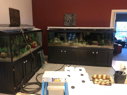 6 x 2 x 2 and 8 x 2 x 2 Aquarium