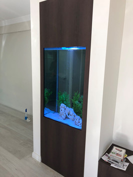 Custom in wall aquarium installed