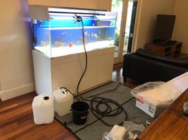 Aquarium being emptied
