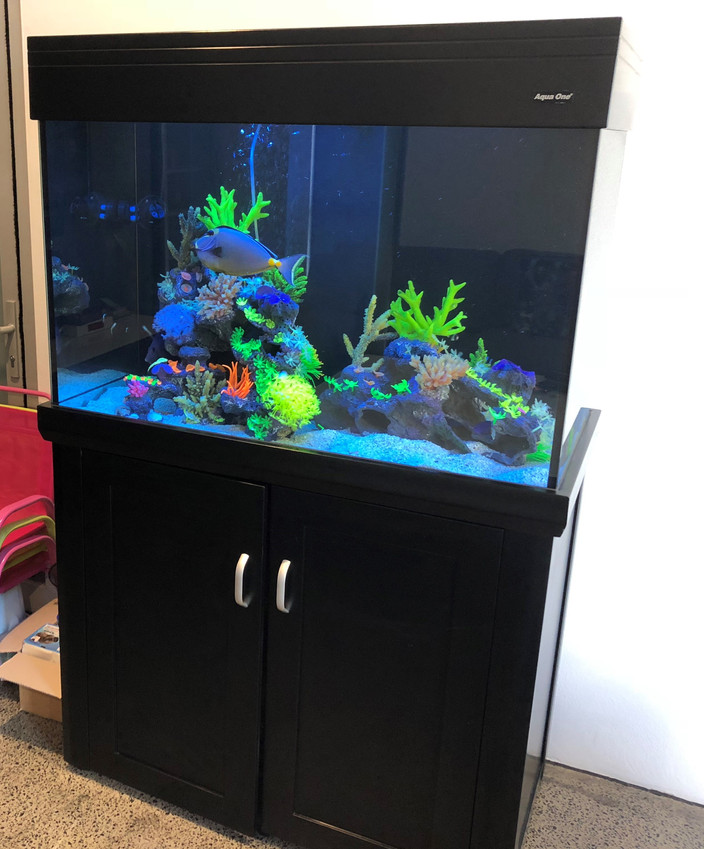 Aquareef 300 Marine Aquarium