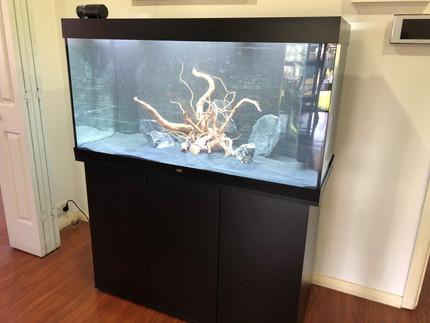 Juwel Rio 350 delivered, installed and just filled