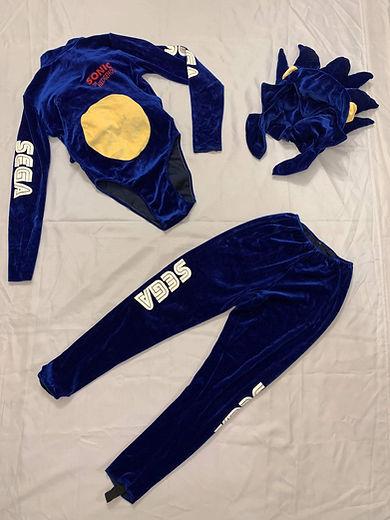 Soniquette Sega Costume (2).jpeg