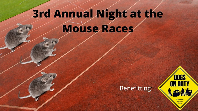 3rd Annual Night at the Mouse Races