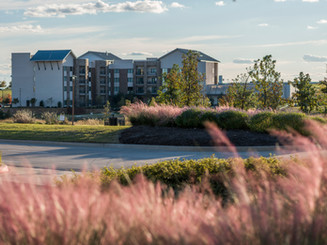 Bluestem Park at Alliance Town Center