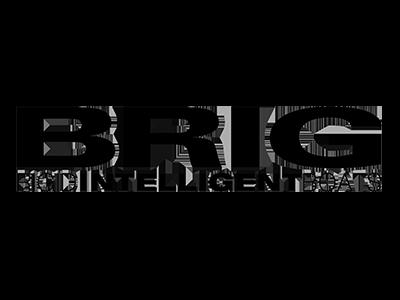 Brig.png