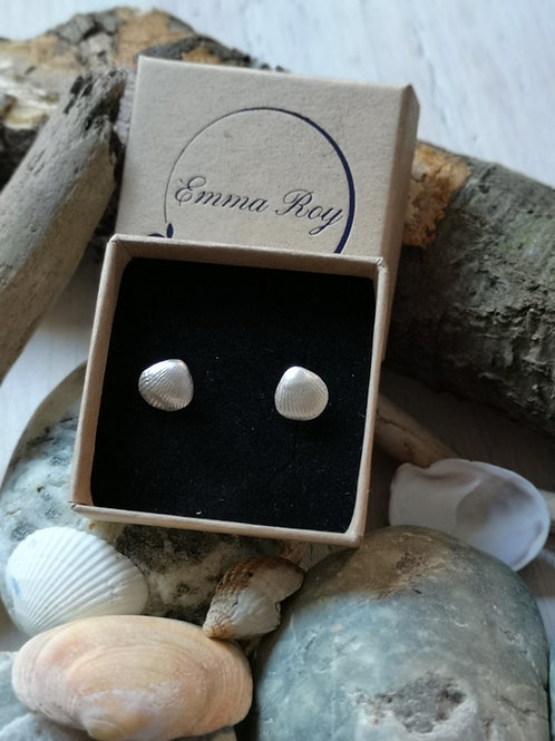 Cockle Shell Stud Earrings