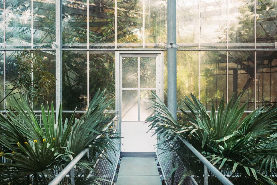 Terrassendach Glashaus