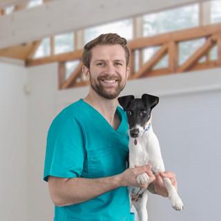 Filhote de cachorro no veterinário