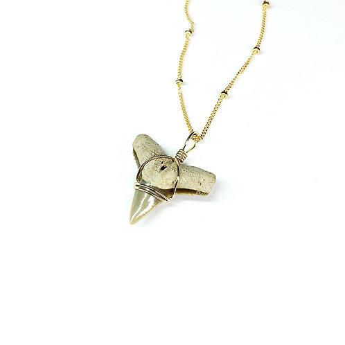 BULL SHARK w/ 14kt beaded chain (577)