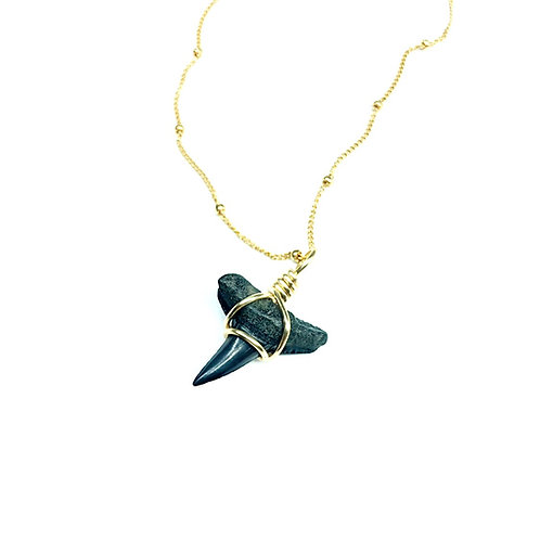 LEMON SHARK (310)