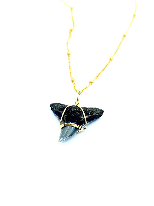 BULL SHARK w/ 14kt beaded chain (70)