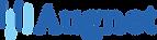 augnet logo.png