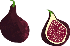 figs (1).png