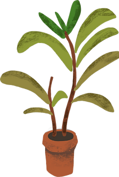 plant 2 (1).png