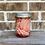 Thumbnail: Pickled Onions