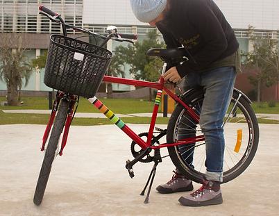 Manawa Bike Rental - modelo Rockit 26