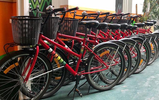 Manawa Bike Rental - bicis