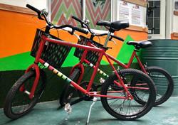 Manawa Bike Rental - Minivelo