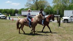 horse rides 096