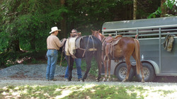 horse rides 184