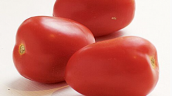 Extra Large Tomatoes 5 lbs