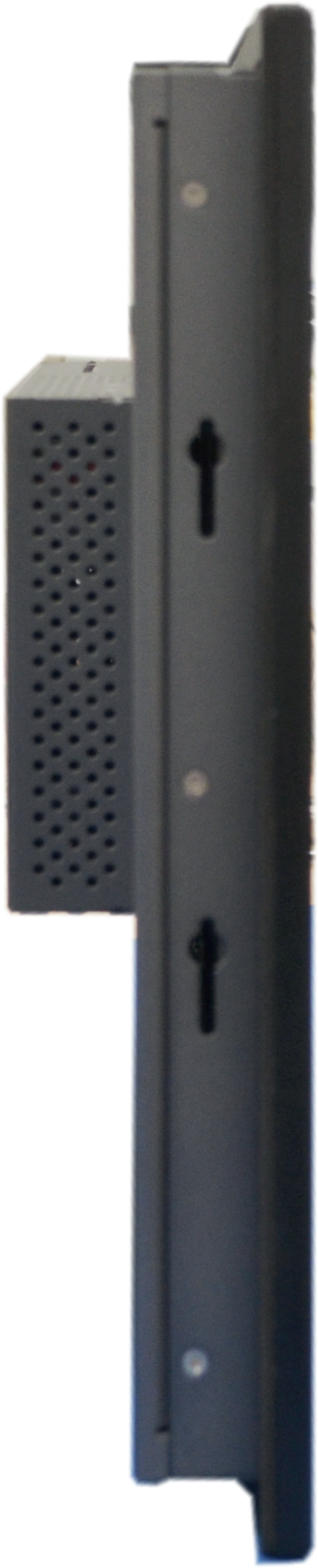 SW Monitors