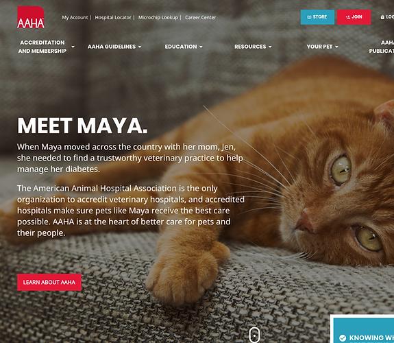Home Cat 2019-10-09-11-41-www.aaha.org.p