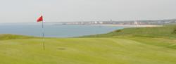 brid-links golf course