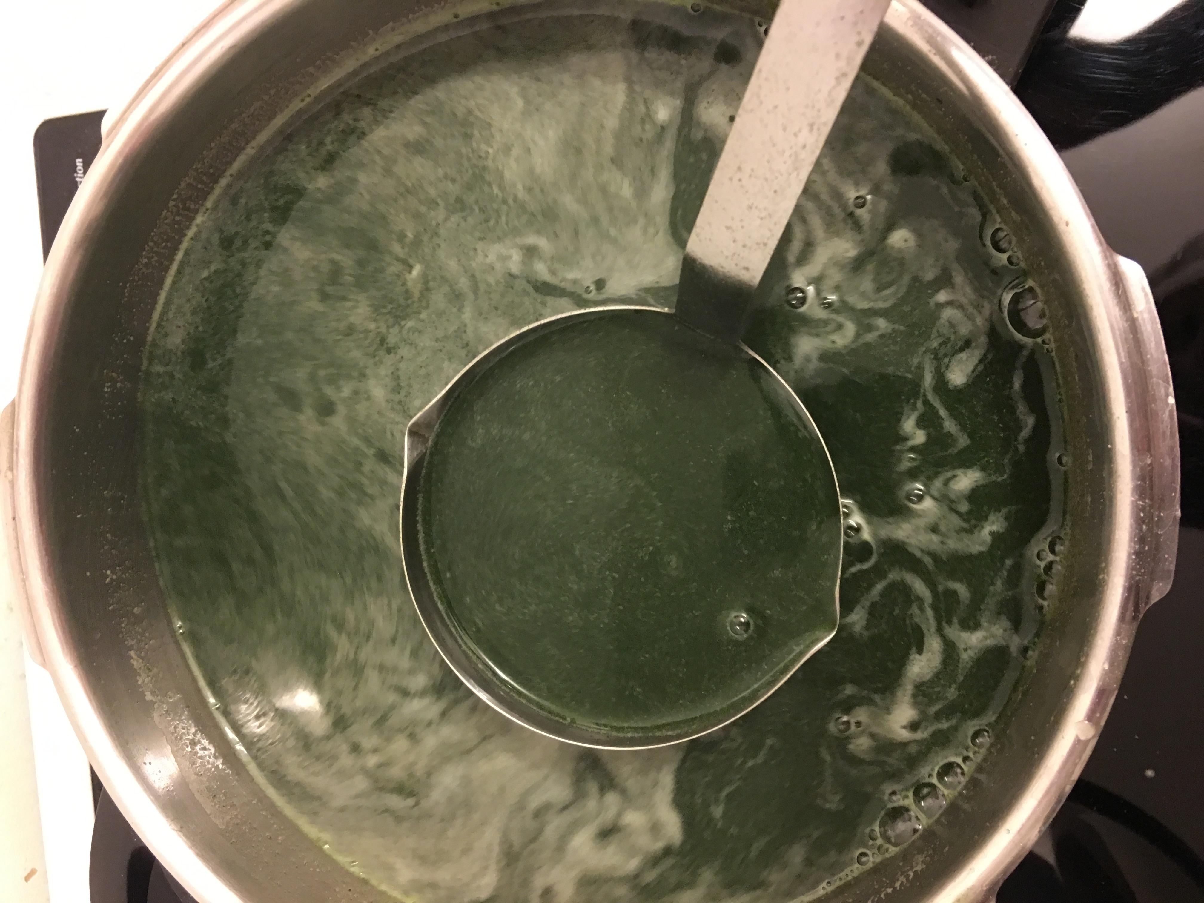 Infusion baume Pousse Activée