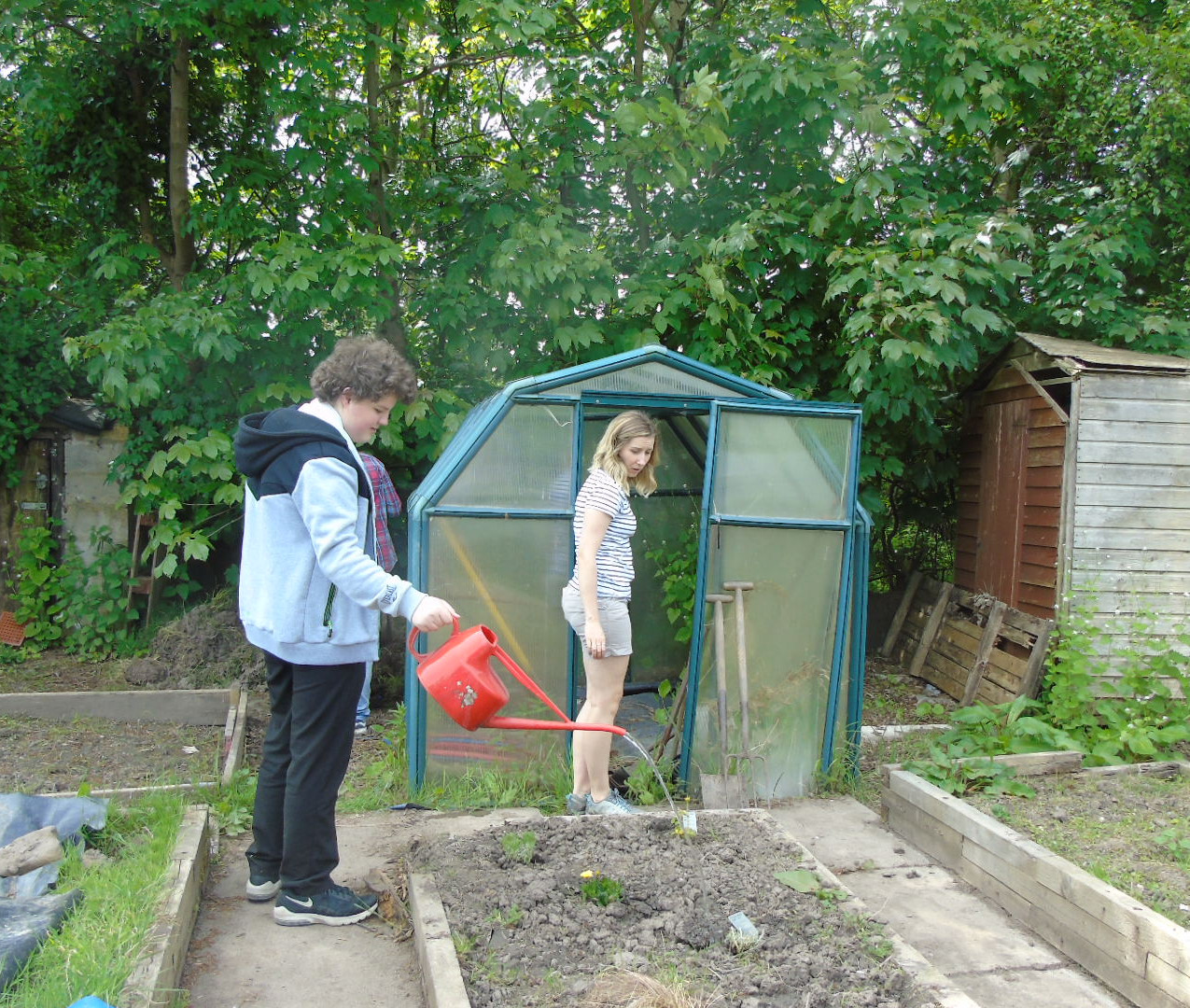 Shed & greenhouse