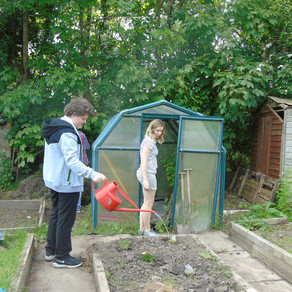 Big Improvements at School Allotment!