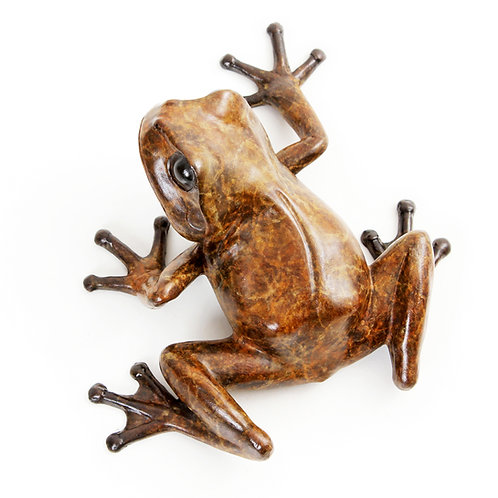 tree frog looking left - limited edition bronze