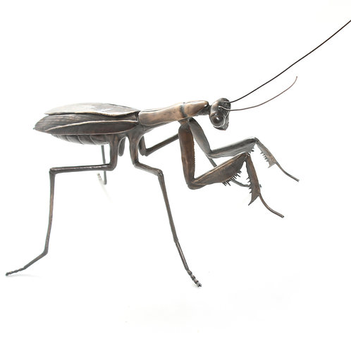 praying mantis - limited edition bronze