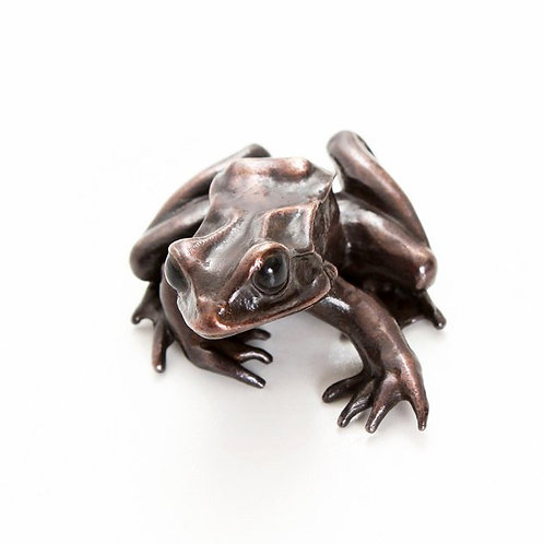 european common frog in bronze - large